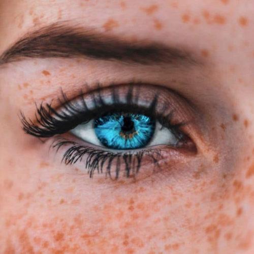 Jahreslinsen (weich)